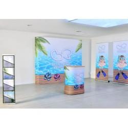 Stand: mostrador, pared, portafolletos y kakémonos